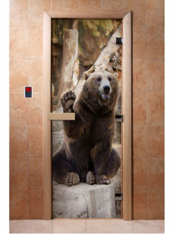 Стеклянная дверь для бани и сауны с фотопечатью 190*70 А061