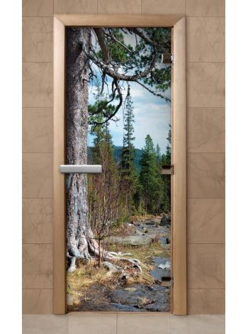 Дверь из стекла с фотопечатью 190*70 F237