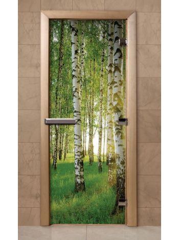 Дверь из стекла с фотопечатью 190*70 F241