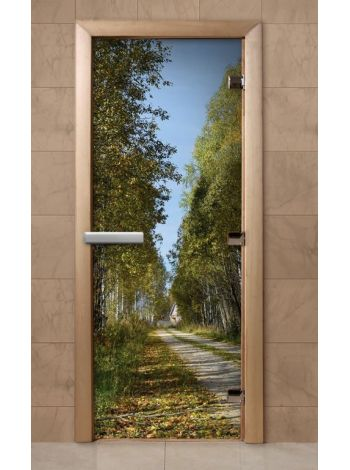 Дверь из стекла с фотопечатью 190*70 F243