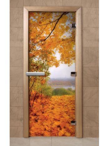 Дверь из стекла с фотопечатью 190*70 F249